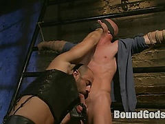Muscle Stud and the Electric Ball Crusher